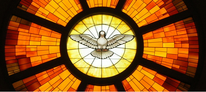 White dove backed by yellow, orange, red and brown stained glass